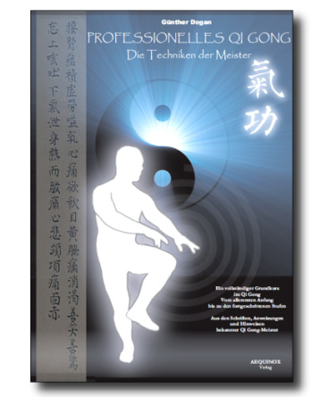 Professionelles Qi Gong - Band 1