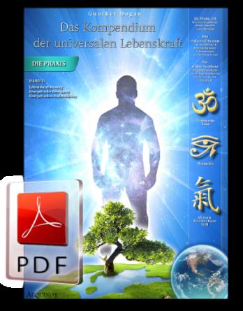 Das Kompendium der universalen Lebenskraft - Band 2 als E-Book