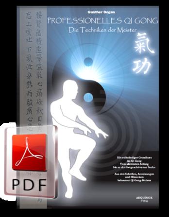 Professionelles Qi Gong - Band 1 als E-Book