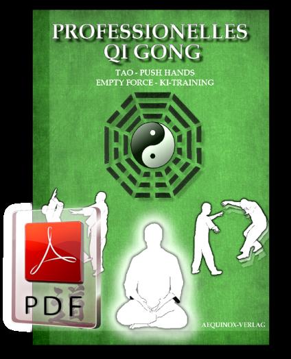 Professionelles Qi Gong - Band 3 als E-Book