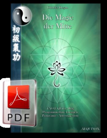 Professionelles Qi Gong - Band 4 als E-Book