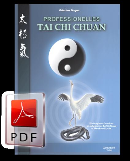 Professionelles Tai Chi Chuan als E-Book