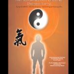 Professionelles Qi Gong - Band 2