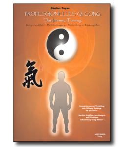 Professionelles Qi Gong - Band 2