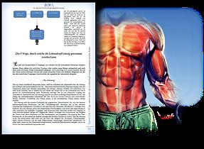 Die Aufgaben und Funktionen der Lebenskraft im Körper des Menschen