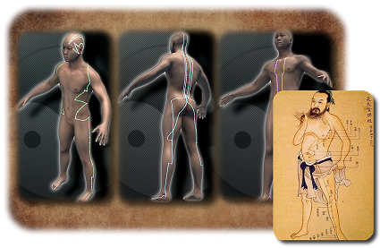 Das Meridian-System des Menschen