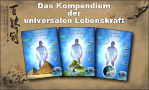 Qi Gong Lehrwerk: Das Kompendium der universalen Lebenskraft
