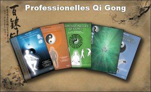 Professionelles Qi Gong - Die Lehrwerke