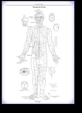 Die 12 Hauptenergieleitbahnen des Körpers