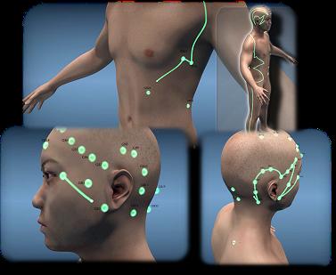 Übersichtliche Animationen jedes Meridians