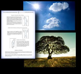 Die Aufnahme von Qi aus natürlichen Quellen (Sonne, Pflanzen etc.)