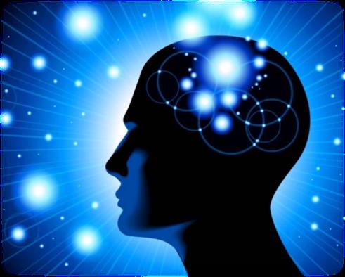 Die schöpferischen Grundkräfte des Menschen